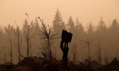 Oregon governor seeks further federal aid as wildfires rage